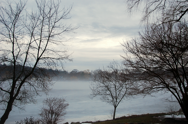 Evening Fog | January 2, 2011